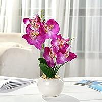 Miguor Mariposa Artificial orquídea Flor 3 Tallos con pequeño jarrón de cerámica para decoración ...