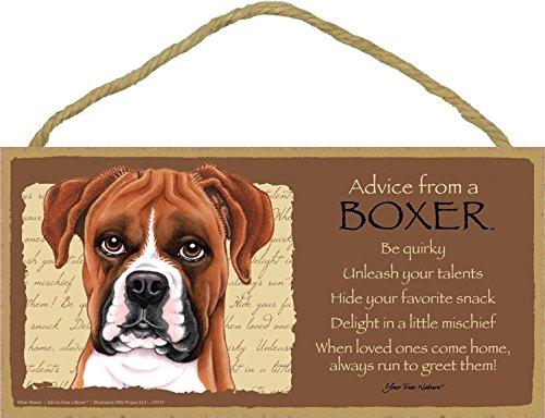 SJT Enterprises, Inc. SJT67515 Holzschild, Aufschrift Advice from a Boxer, 12,7 x 25,4 cm, MDF-Holz