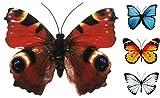 Coen Bakker Schmetterling Metall Wand Deko Bunt Garten Wandschmuck Falter Schmetterlinge, Farbe:Braun, Größe:40 cm