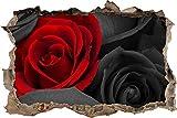 Pixxprint 3D_WD_S4981_62x42 rote atemberaubende Rose Wanddurchbruch 3D Wandtattoo, Vinyl, schwarz/weiß, 62 x 42 x 0,02 cm