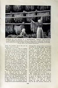 SAULE de CHAISE EN OSIER de TABAC de c1920 ALLEMAGNE BRANDEBOURG