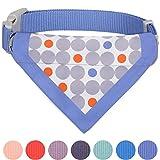 Blueberry Pet Unisex Tupfen Kühles Sommer Blaues Baumwoll-Mischgewebe Bandana Hundehalsband, S, Hals 30cm-40cm, Verstellbare Halsbänder für Hunde