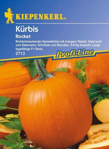Kürbis, 'Rocket' F1