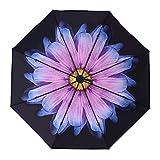 NONGNIML Regenschirm Taschenschirm - Regenschirm Taschenschirm Föhn Wind- Automatische sonnig und regnerischen Tag Nylongewebe kompakte Halbautomatische Begleiter Mechanismus