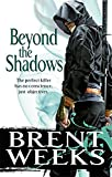 Beyond The Shadows: Book 3 of the Night Angel