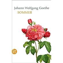 Sommer (insel taschenbuch)