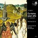 Cantates Pour Alto, Bwv 35, 54 & 170 (Alt-Solokantaten)