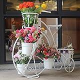 D&LE Vélo Support De Fleurs Créatif Métal Fer Étagère à Fleurs Indoor Plein Air...