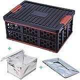Movaty Movaty Kofferraum-Organizer und Aufbewahrungsbox mit Deckel Kühltasche und Wasserdichte Tasche Faltbare Organizer für Auto Garage Zuhause oder Garten, Schwarz