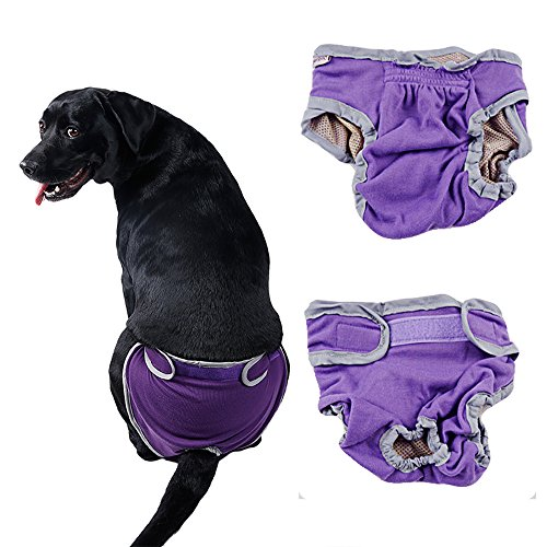 Pee Wee Hose (s-lifeeling Hund weiblich Windeln Puppy Jelly Case Protektoren Hose Puppy groß/klein)