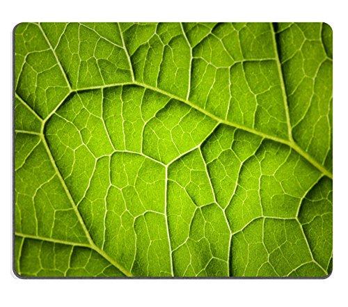 Liili Mauspad Naturkautschuk Mousepad natur Makro Foto Hintergrund mit Grün Blatt Venen, Oberfläche Bild-ID 22032379