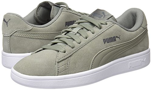 Puma Smash v2, Unisex-Erwachsene Sneaker, Grau (Rock Ridge), 41 EU