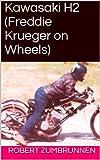 Kawasaki H2 (Owned It Book 1) (English Edition) usato  Spedito ovunque in Italia