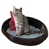 IRIS, Katzentoilette mit Rand und Schaufel 'Cat Toilet', PNE-480, Plastik, glänzende Farbe, 50 x 40 x 15 cm
