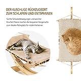 Pro Petcare   Hängematte für Katzen, Spielzeug, Schlafplatz und Trainingsgerät in Einem - 2