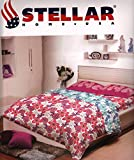 Stellar Home USA Cotton Double Bed-Sheet...
