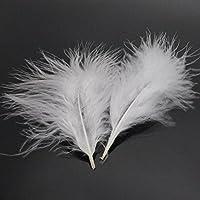 Yalulu 100Pcs Plumes Naturelles pour Bijoux Sac DIY 10-15 cm, Multicolore (Blanc)