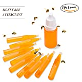 Janolia Miel Abeille Swarm Attirants leurres, Abeille Attractif Queen Bee Attirant des Outils d'appâts liquides Accessoires pour Apiculture Apiculture Bee Culture