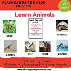 SOE Animals Flashcards for Kids Travelfriendly Handmade Flashcards Learn Animals Easily with These Laminated and Waterproof flashcards (Animals for Kids Toys)