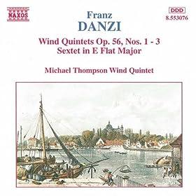 Wind Quintet in G minor, Op. 56, No. 2: I. Allegretto
