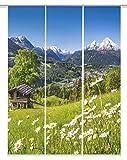 Home Fashion Digitaldruck Schiebevorhang 3er Set, Stoff, grün, 245 x 60 x 245 cm, 3-Einheiten