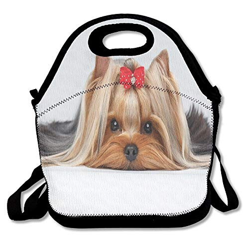 Apron bags Lying Yorkshire Terrier with Cute Ribbon Yorkie Love Portrait of A Dog Lunch Bag Tote for School Work Outdoor