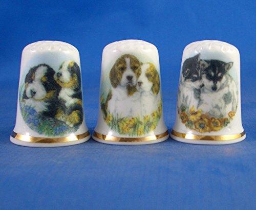 Porcelana China colección de dedales Juego de tres cachorros