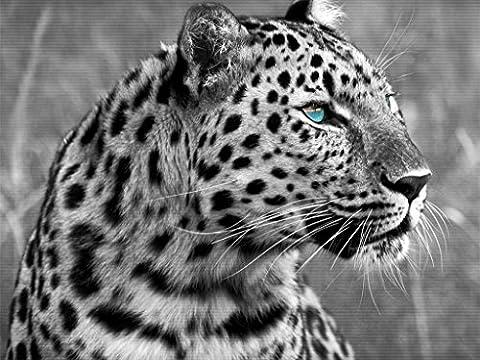 DIY Handmade Diamond Embroidery Painting Leopard