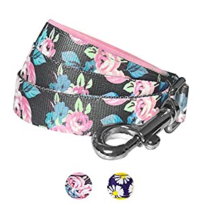 Blueberry-Pet-Daisy-Floral-Prints-Dog-Lead-with-Neoprene-Padded-Handle-Matching-Collar-Harness-Available-Separately