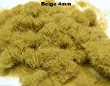 WWS Beige 4 millimetri Model Mix Basing Statico Grass 10g G, O, HO / OO, TT, N.Z Wargames - wws - amazon.it