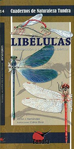 Libélulas, Introducción a las especies ibéricas