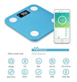 Yunmai Mini Bluetooth Smart Body Fat Scale & Body Composition monitor with Free Fitness App by Yunmai