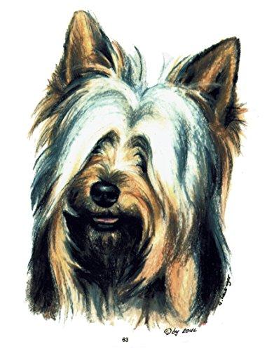 pet-lovers-gifts Aufkleber/Sticker/Autoaufkleber - Hunde Australian Silky Terrier [r063] -