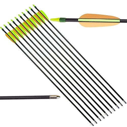 10 Frecce Freccia per Arco Tiro Bersaglio Fibra Vetro Archi 20 60 Libbre Punta - 20 Frecce