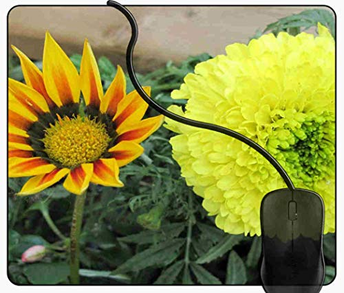 XL Mauspad Gaming Blume, die in meinen Garten geht XL Mousepad groß mit Motiv, Tischunterlage Large Size, verbessert Präzision und Geschwindigkeit 2J1004 (In Meiner Blume)
