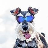 Homesupplier Gafas de sol para perros y mascotas, impermeables, resistentes al viento, protección...