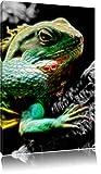 Dark großes Chamäleon schwarz/weiß Deluxe Format: 120x80 cm auf Leinwand, XXL riesige Bilder fertig gerahmt mit Keilrahmen, Kunstdruck auf Wandbild mit Rahmen, günstiger als Gemälde oder Ölbild, kein Poster oder Plakat