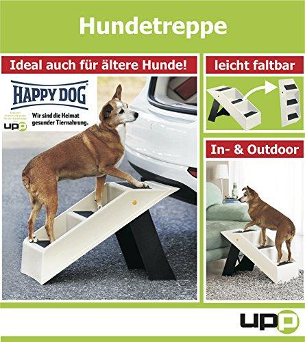 Hundetreppe / Katzentreppe