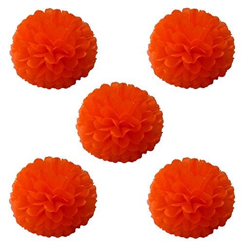 eidenpapier Pom Poms Girlanden aus Papier Papier Kugel Blumen für Hochzeit Party Geburtstag Baby Dusche Dekorationen 10Stück Orange ()