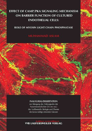 Effect of cAMP/PKA signaling mechanism on barrier function of cultured endothelial cells: Role of myosin light chain phosphatase (Edition Scientifique)