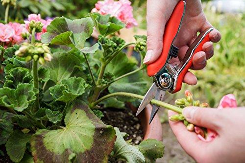 connex-mini-trimmerschere-blumenschere-floristikschere-rosenschere-gartenschere-flor70368-2
