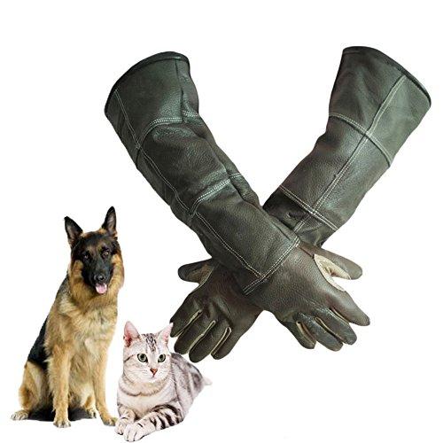 Rziioo Handschuhe Verdickt Beschneiden Animal Handling Scratch, Haustier Anti-Biss Hand Rindsleder Lederhandschuhe Schwarz, Lange 23,6 Zoll Unterarmschutz,M