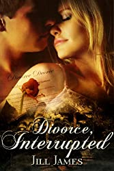 Divorce, Interrupted (The Lake Willowbee Series Book 1) (English Edition)