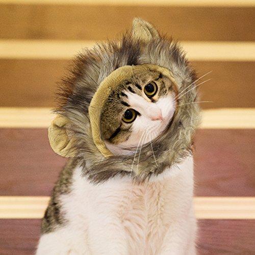 (Pawaboo katzen Mähne,Haustier Perücke,Katzenbekleidung mit Ohren für Katze nur, für karneval, Kostüm, Weihnachten,Löwen)