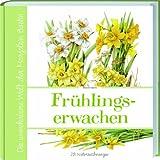 Marjolein Bastins Frühlingserwachen: 28 Naturzeichnungen
