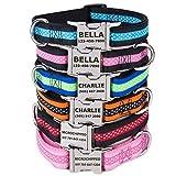TagME Personalisierte Hundehalsbänder mit Name und Telefonnummer Eingraviert/Schnellverschluss-Metallschnalle/Mode-Tupfenmuster/Rot & Schwarz