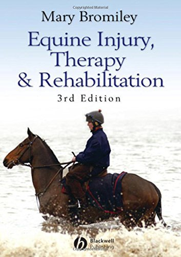 Equine Injury, Therapy and Rehabilitation by Mary Bromiley (2007-05-09)