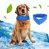 Pawaca kühlendes Hunde-Halsband
