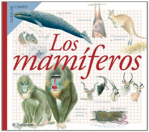 LOS MAMIFEROS (Guías de campo) por Àngels Julivert Zamarreño