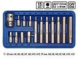 15 Tlg Innensechskant Einsätze Bitsatz mit 1/2 Adapter